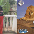 Newly arrived QSL from 5Z0L